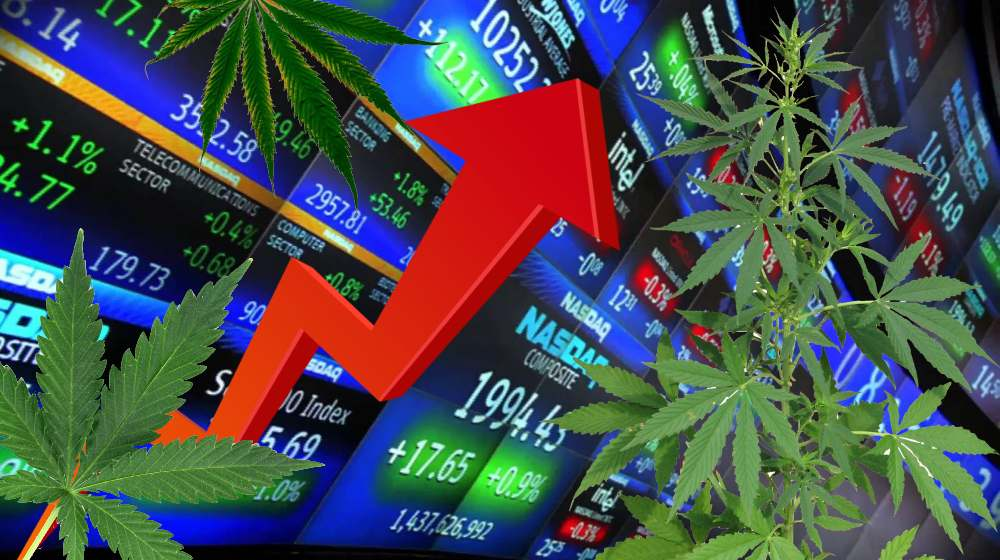 Marihuana medicinal inversionistas